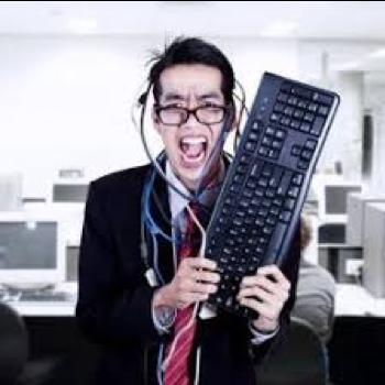 Computer Consultant